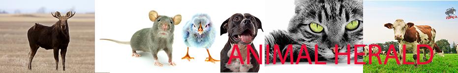 Animal Herald