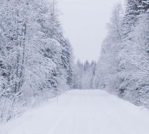 snowkl 300x270 snowkl.jpg