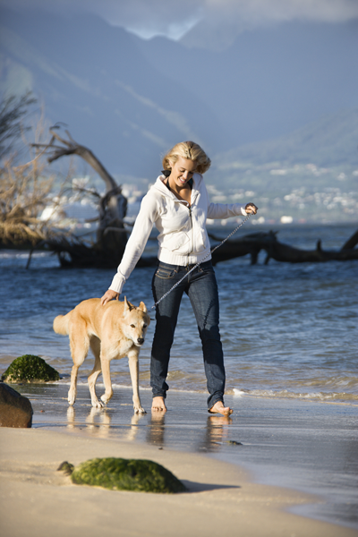 Two Walking with your dog