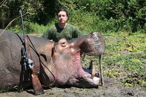 320px Hippo Trophy 2 300x200 320px Hippo Trophy 2